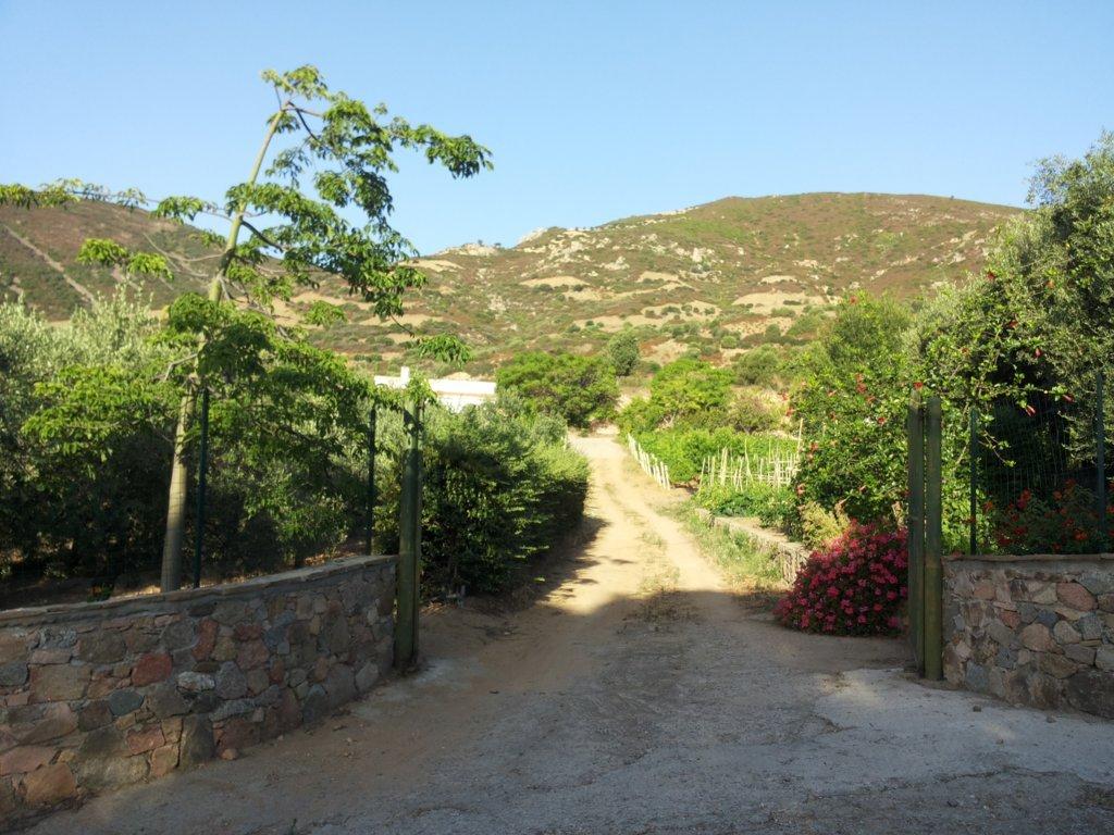 Esterni - giardino  (2)